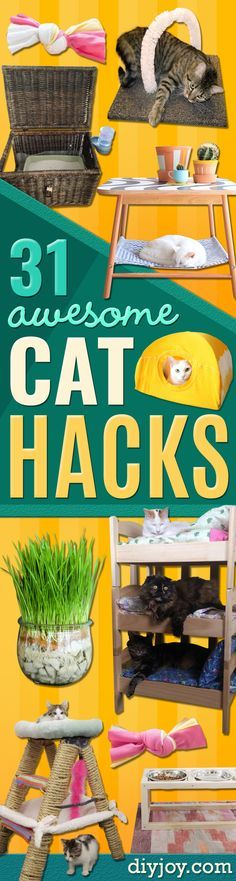 DIY Cat Hacks - Tips and Tricks Ideas for Cat Beds and Toys, Homemade Remedies for Fleas and Scratching - Do It Yourself Cat Treat Recips, Food and Gear for Your Pet - Cool Gifts for Cats http://diyjoy.com/diy-cat-hacks