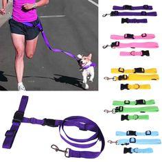 Dog Running Waist Lead