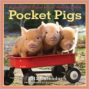 Pocket Pigs 2012 Calendar: The Teacup Pigs of Pennywell Farm (Wall Calendar) Cute Baby Animals, Animals And Pets, Funny Animals, Farm Animals, Baby Pigs, Pet Pigs, Pocket Pig, Teacup Pigs, Mini Pigs