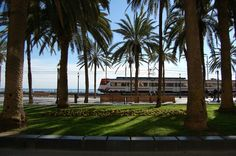 Badalona Beach, Water, Outdoor, Gripe Water, Outdoors, The Beach, Beaches, Outdoor Games, The Great Outdoors