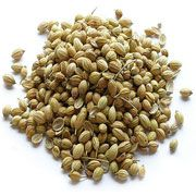 Coriander seeds (Dhaniya) is a member of a parsley family. The seeds are oval in shape, ridged, and turn from bright green to beige when ripen. To know more about Coriander seeds click this http://indianspicesfactory.com/