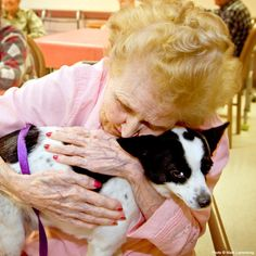 Pet Therapy for Hospice Patients at The Animal Rescue Site. This is a wonderful idea.  Love and comfort to people who can benefit so much!