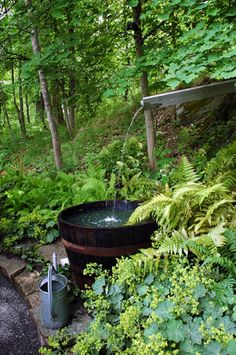 A wonderful wood barrel fountain in a woodland garden Diy Garden, Shade Garden, Dream Garden, Garden Landscaping, Home And Garden, Unique Gardens, Beautiful Gardens, Barrel Fountain, Water Features In The Garden