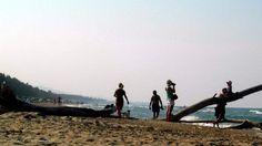 """""""Idea"""" del 2016: rubare il simbolo dell'Area Marina Protetta del Cerrano. Interviene la Guardia Costiera"""