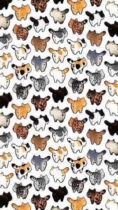 39 Cute Cat Wallpaper for Cat People wallpaper,cat wallpaper,cat,pet Cat Phone Wallpaper, Cat Pattern Wallpaper, Tier Wallpaper, Cute Cat Wallpaper, Kawaii Wallpaper, Cute Wallpaper Backgrounds, Animal Wallpaper, Cute Cartoon Wallpapers, Pastel Wallpaper