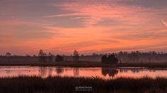 Photo Twilight Fen in Landgoed De Hamert part of National Park De Maasduinen by William Mevissen. Landscape and Nature Photography at www.williammevissen.nl.