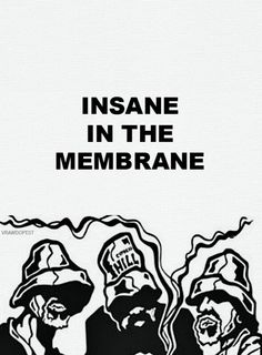 Insane in the membrane