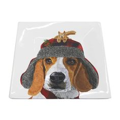 Themes - Holidays & Seasons - Winter – Page 6 – Paperproducts Design Tabletop Accessories, Square Plates, Fine Porcelain, Beagle, Funny Dogs, Squirrel, Dog Lovers, Illustration Art, Seasons