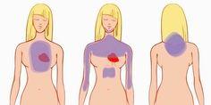 Iedere dag krijgen in Nederland ongeveer 80 mensen een hartinfarct. Het is dus van groot belang dat je de waarschuwingssignalen van je lichaam herkent zodat je op tijd hulp kan zoeken. Roken, een h…