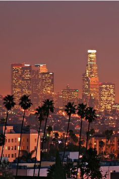 Los Angeles, California #LA #Palms  UpOut is the discriminating guide to the best weird events, underground culture, and unique parties. #UpOutLA