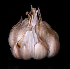 Smart Tip: Peel an Entire Head of Garlic in 10 Seconds Saveur. I never cook with an entire head of garlic. Garlic Head, Garlic Oil, Garlic Clove, Garlic Juice, Roasted Garlic, Garlic Powder, How To Peel Garlic, Dandy, Do It Yourself Food