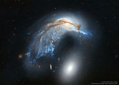 The Porpoise Galaxy from Hubble May 2020 via NASA What's happening to this spiral galaxy? Just a few hundred million years ago, NGC the upper. Hubble Space Telescope, Space And Astronomy, Carl Sagan, Astronomy Pictures, Hubble Pictures, Spiral Galaxy, Hubble Images, Andromeda Galaxy, Milky Way