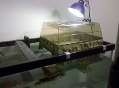 Turtle Topper Modification for wider tank