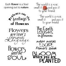 flower quotes - Google Search