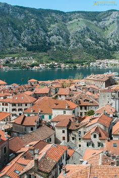 The ultimate guide to visiting Montenegro. Best destinations and things to do in Kotor, Zabljak, Koror and beyond + top local food and cuisine and practical tips for your trip. Travel in Eastern Europe. | Everything Everywhere Travel Blog #Montenegro