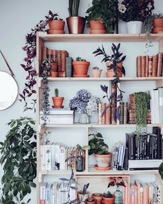 A perfectly imperfect #shelfie is accessorized with books and plants.