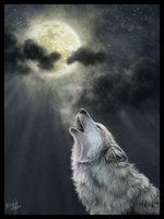 The Wolves by Fionnade.   Their enchanting voices Cry to the crystal moon, As light of silver Descends with grace.  The pale river sparkles. Suddenly alive It shivers uncontrollably Chilled by their cries.  Time is frozen; The moment slowly fades.The wolves prowl restlessly Calling to each other  A song of wonder Fills the air. None have heard it before, Though it is as ancient as the moon.