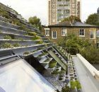 design urbain dune toiture jardin 2