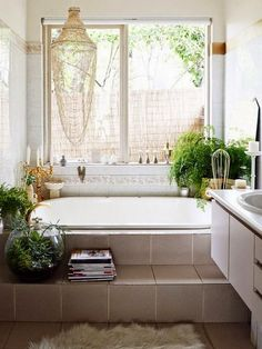 I really want a window in  my bathroom because I love light and plants.  Moon to Moon