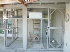 Enclosures For Cats