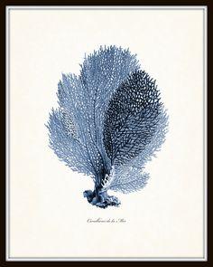 Vintage Indigo Blue Sea impresión Coral conjunto no. 2