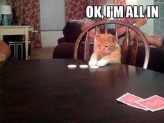 The cutest poker champion.