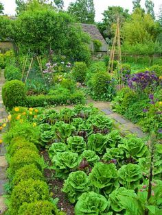 9 AWESOME DIY IDEAS FOR YOUR GARDEN garden ideas, gardening ideas, gardening for beginners, gardening design, gardening tools,  gardening hacks, gardening and landscape, gardens and gardening ideas #gardening #gardenhacks #gardeningideas Plan Potager, Potager Garden, Veg Garden, Vegetable Garden Design, Garden Cottage, Edible Garden, Garden Landscaping, Vegetable Gardening, Organic Gardening