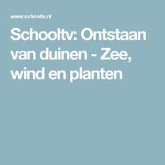 Schooltv: Ontstaan van duinen - Zee, wind en planten