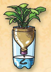 Self-watering planter made from old pop bottles...Cut the top third off a two-liter plastic bottle. Ask an adult to drill a small hole in the cap. Pass a string through the hole. Fill the bottom of the bottle about half way with water. Place the top upside-down in the bottom and put in your plant. The string will wick up the water into the soil.