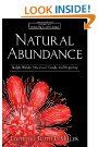 Natural Abundance: Ralph Waldo Emerson's Guide to Prosperity   by Ruth L. Miller