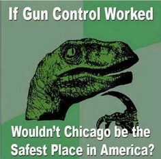Chicago...most stringent gun control laws in the USA, while the highest record of murders.
