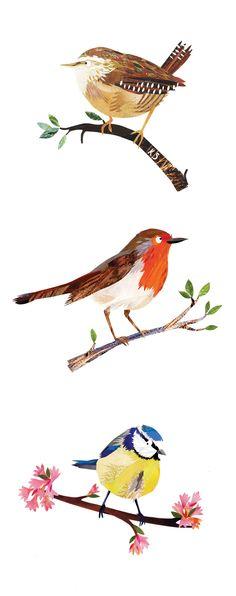 Birds - Paper cut illustration by Kate Slater