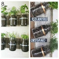 For tight spaces, this is a great way to grow herbs (not to mention, a way to recycle glass jars and old lumber!) - Lisa Robinson