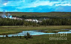 Gibbon River Valley : See  more images at http://robert-bales.artistwebsites.com/