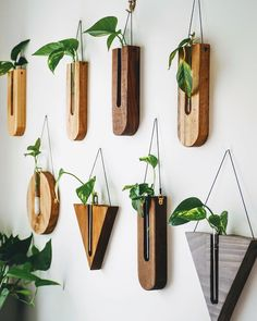 Today is the last day to participate in our spring GIVEAWAY, if you would like to win one of this versátiles wall decor/propagation… Woodworking Projects Diy, Wooden Crafts, Diy Wood Projects, Wooden Vase, Diy Home Crafts, Propagation, Plant Decor, Wood Design, Flower Vases