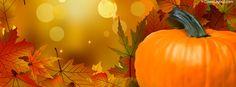 Harvest Pumpkin Facebook Cover coverlayout.com Thanksgiving Facebook Covers, Fall Facebook Cover, Facebook Cover Images, For Facebook, Happy Thanksgiving, Facebook Timeline Photos, Twitter Header Photos, Twitter Cover, Twitter Headers