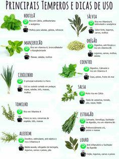 Eco Garden, Home Vegetable Garden, Garden Care, Garden Planters, Food C, Diy Food, Green Veggies, Plant Care, Food Hacks