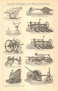 Grabado antiguo 1904 del equipo de cultivo de la patata