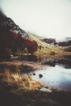 { autumn wilderness }