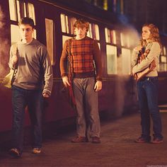 The Trio. Even though Harry (under the influence of Voldy, of course) was awful to his friends that year, they stood by him and tried to help