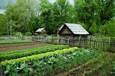 Vegetable Garden Design Ideas * Please continue read.