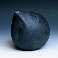 Reproachful blackbird