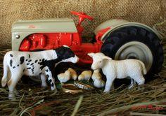Farm Marriage