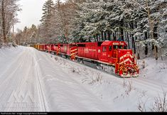 RailPictures.Net Photo: VTR 303 Vermont Rail System EMD GP40-2 at Rockingham, Vermont by Kevin Burkholder