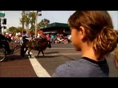"""Paradadelsol Rodeo   """"The West Most Western Town - Scottsdale"""""""