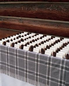 pinecones + plaid - but could easily be changed to color coordinated objects in between rows of placecards
