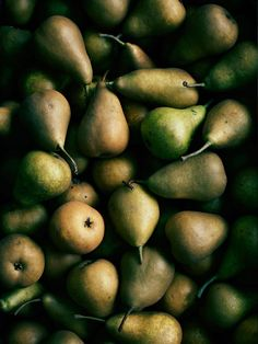 Pears by Brett Stevens
