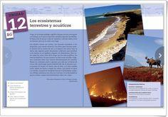 """Unidad 12 de Ciencias de la Naturaleza  de 2º de E.S.O.: """"Los ecosistemas terrestres y acuáticos"""""""