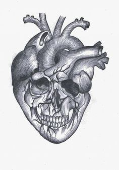 44 Ideas Tattoo Heart Anatomical Bones For 2019 Cat Skull Tattoo, Pirate Skull Tattoos, Small Skull Tattoo, Skull Tattoo Design, Tattoo Black, Feminine Skull Tattoos, Floral Skull Tattoos, Tattoo Floral, Anatomical Heart Drawing