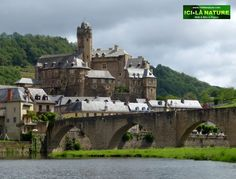 Old bridge over the Lot, Estaing, Aveyron, France.
